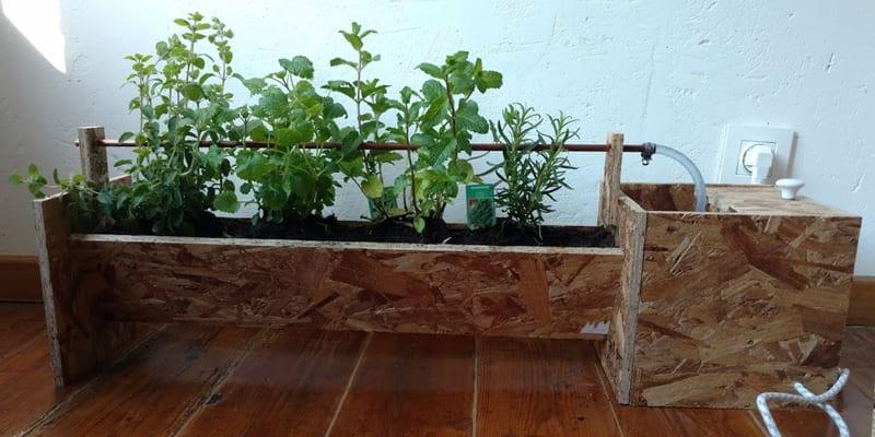 raspberry pi irrigation finished